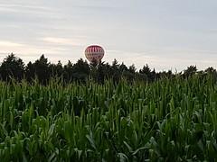 160730 - Ballonvaart Sappemeer naar Eext 21