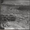 Petra [Jabal Haroun]