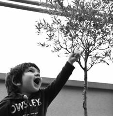 Solo chi sogna può volare! (illyphoto) Tags: bolla sorpresa bambino stupore felicità bolladisapone illyphoto photoilariaprovenzi