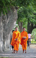 Asian young monks walking morning alms (phuong.sg@gmail.com) Tags: old travel red orange brown man senior asian thailand golden worship asia cambodia khmer buddha buddhist south traditional religion pray group decoration culture belief monk buddhism delta carving vietnam viet monastery human barefoot sacred government meditation tradition hanoi laos hindu saigon mekong indochina alms novice