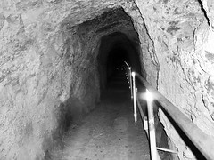 """""""The secret of remaining young is never to have an emotion that is unbecoming."""" ―Oscar Wilde 🌋 (anokarina) Tags: hawaii hi honolulu hnl oahu diamondheadcraterhike diamondheadcrater diamondhead volcano crater volcanic dormant kaalawai bw tunnel rail monochrome grey grayscale blackwhite casioexs10 handrail"""