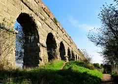 Italy 2015  78 (JJKDC) Tags: italy rome ruins italia ancientrome