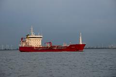 Loya (DST_6648) (larry_antwerp) Tags: netherlands ship nederland vessel schelde tanker  schip  rilland  loya               9540273