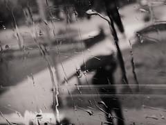 Bus No. 148 (.Dirk) Tags: street people bw berlin rain sw regen bus148 potsdamerstrase olympusxz2