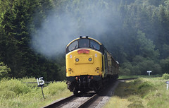 Class 37 264 northbound in Newtondale [NYMR] (soberhill) Tags: diesel gala pickering grosmont nymr 2016 northyorkshiremoorsrailway class37 newtondale 37264