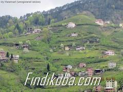 Saraçlıdan köy (7)