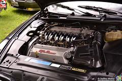 Alfa Romeo Brasil 2015 (Delfino Mattos) Tags: spider gtv 164 mito alfaromeo cuore 147 jk 155 156 145 giulietta 159 alfetta 166 caxambu fnm 2150 2300 cuoresportivo worldcars