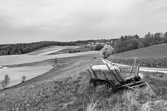 Abandoned cart (JarHTC) Tags: bw abandoned landscape sigma poland fields cart pomerania dp1m