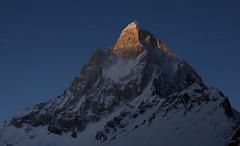 Mt. Shilling at twilight (sevenhighskies) Tags: twilight himalaya majestic gangotri garhwal shivling tapovan