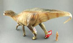 Shantungosaurus (RobinGoodfellow_(m)) Tags: china cina pnso shantungosaurus