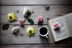 Coffee break (Stefi92) Tags: life wood flowers stilllife coffee breakfast canon vintage book spring still onthetable