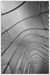 Athens / Athen (drasphotography) Tags: blackandwhite bw abstract geometric 2004 monochrome lines architecture graphic geometry monotone monochromatic athens greece olympia architektur sw olympic griechenland muster bianconero abstrakt athen linien geometrisch
