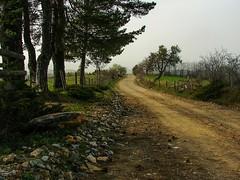 Road (Senol Demir) Tags: road nature ngc yol manzara kastamonu doa concordians eeecotourism