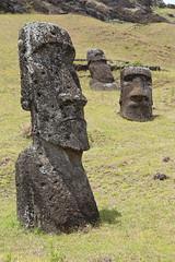 Moai statues Rapa Nui Easter Island Rano Raraku nursery (nick taz) Tags: statue stone heads moai rano raraku nui rapa
