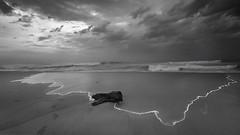 Marina (kevinkishore) Tags: ocean city light sea sky urban white black beach water clouds marina sand waves horizon shore sands chennai shor