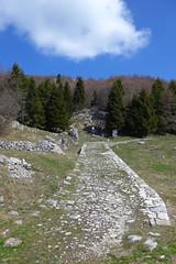 lastricata (Tabboz) Tags: panorama primavera erba montagna strade cima prati vetta pascoli prealpi fioriture