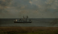 Grand Isle shrimp boat (katie munson smith) Tags: grandisle shrimpboats