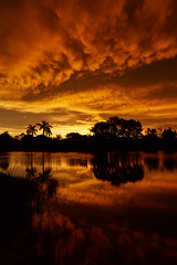 Another sunset (another_scotsman) Tags: sunset reflection landscape florida naples greatphotographers