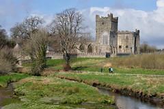 Tintern Abbey, Wexford (jaroslavd) Tags: ireland hook peninsula cistercian wexford tinternabbey