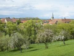 Zeilitzheim