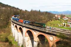 DSC_8710bTT (Lorenzo Banfi) Tags: train diesel milano slovenia reagan taurus rak hercules korridor boro postojna treni sz 363 postumia 664 brigite borovnica rakek