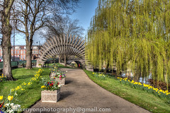 Quantum Leap in bloom (johnkenyonphotography@gmail.com) Tags: uk summer england dog heritage history nature beauty landscape shropshire riversevern shrewsbury olly quarrypark