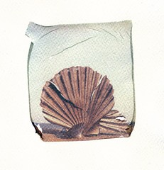 Scallop Emulsion Lift (Pictures from the Ghost Garden) Tags: sculpture color colour slr art film beach vintage project polaroid sx70 coast suffolk seaside lift britten coastal filter tip 600 integral instant benjamin aldeburgh instantcamera folding density maggi composers impossible ip emulsion neutral polaroidsx70 onestep instantfilm foldingcameras vintagecameras nd4 hambling impossibleproject roidweek2015
