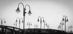 A forest of lamps (ashokboghani) Tags: newjersey streetlamp libertypark