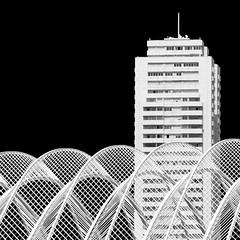 Live wire (Arni J.M.) Tags: bw building valencia architecture spain arches calatrava santiagocalatrava curvature livewire ciudaddelasartesylasciencias lumbracle