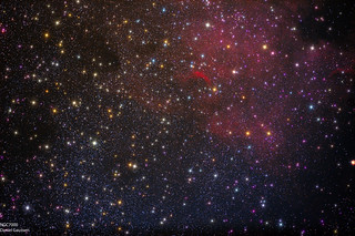 NGC7000 - The North America Nebula