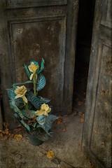 Artificial Mourning (margatt2012) Tags: friedhof paris abandoned grave tomb mausoleum forgotten decrepit montparnasse derelict crypt cimeterie ceemetery