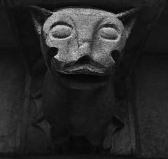 Bat-gouille (ludovic.la88) Tags: statue pierre extrieur gargouille