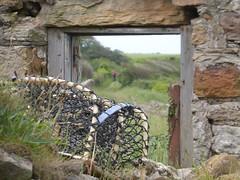 Lintel (Brian Cairns) Tags: saintandrews cambo fifecoastalpath kingsbarns brianbcairns therockandspindle buddoroack