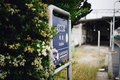 (yasu19_67) Tags: morning station japan bokeh atmosphere railway 55mm osaka digitaleffects photooftheday filmlook filmlike vsco mamiyasekorsx55mmf18 vscofilm sony7ilce7