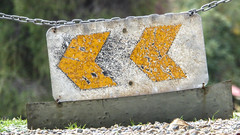 Yellow Chevrons (Theen ...) Tags: adelaide bokeh campus carpark chain chevrons closed entrance gravel lumix metal theen university waite weathered yellow