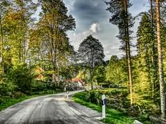Blasiwald(1) (PhosMaS70_) Tags: deutschland schluchsee 2014 badenwrttemberg panoramio5143442112167927