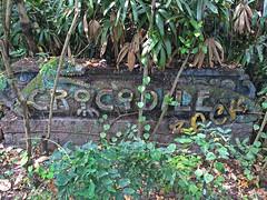 (global.local) Tags: bali building abandoned nature indonesia crocodile amusementpark abandonedplaces naturewins crocodilerock