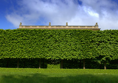 Big Hedge (Tony Worrall Foto) Tags: northern uk update place location north visit area county attraction open stream tour country welovethenorth northwest england unitedkingdom harewoodhouse countryhouse harewood leeds westyorkshire greatbritishfoodfestival foodfestival event show annual foodiesfestival great british food festival house green hedge garden grounds