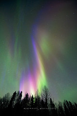 An Angel Danced Across The Sky (seanajsimmons) Tags: canada color colour jasper alberta northernlights auroraborealis jaspernationalpark darksky travelalberta nightskyphotography ajsimmonsphotography