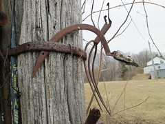 Forgotten (gabi-h) Tags: house abandoned rural rust branches rustic pole sickle pitchfork hockeystick princeedwardcounty barnboard gabih