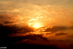 (Izah Shahid) Tags: pakistan sunset sky sun bird clouds evening wings nikon potd serenity lahore d5300