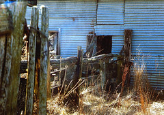 Orroral Homestead 2004, Orroral Valley, Canberra ACT Australia (John Panneman Photography (AcePanno)) Tags: abandoned farm australia hut alpine canberra homestead pioneer act shearing orroralvalley panneman
