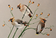 "Artwork ""Bohemian Waxwings"" 2015 (Wild Chroma) Tags: nature birds illustration ink painting artwork drawing wildlife garrulus gouache waxwing bombycilla bombycillagarrulus way2015"