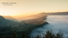 Cemoro Lawang - Mt. Bromo (Sadashiva T S) Tags: morning cliff mist mountain clouds sunrise indonesia landscape dawn volcano lava java nikon village valley sunrays bromo mountbromo mtbromo 2470 eastjava probolinggo cemorolawang d700 lavaview mountbatok sukapura cemaralawang bromocaldera cemoralawang ngadisarivillage