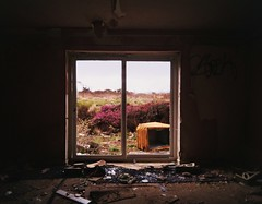 Window on the Heather (teaselbrush) Tags: camera uk england urban white holiday streetart west abandoned film window up angel lens toy hotel cornwall grafitti slim angle decay heather south wide motel eerie spooky chalet british analogue ashton derelict boarded superheadz