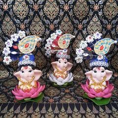 เปิดให้บูชาองค์น้องประทานทอง ประทับบัวสวรรค์ พร้อมพี่หนูมุสิกะ บูชา 999 บาท ค่าจัดส่ง 100 บาท  ร้านกังกิเทน คเณศ (Kangi-Ten Ganesha)  เปิดให้บริการ วันพฤหัสฯ - วันอาทิตย์ เวลา 18:00 - 24:00 น. ตลาดรถไฟศรีนครินทร์ หลังซีคอน โซนตลาดนัด ล๊อค D22  สนใจบูชาติด