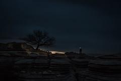 DARKNESS (Der_Golem_) Tags: arbol cielo nocturna malaga solitario antequera eltorcal 2016 linterna largaexposicion viaverde contaminacionluminica elniodelasluces
