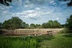 _EAF6789.jpg (altiok) Tags: blue light sky tree green water nikon wasser natural cloudy walk natur himmel wolken bank filter lee gras grn teich landschaft bume blauer holzbank d810