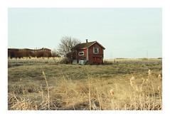 Rural. (Drew Amyot) Tags: alberta 2016 nikonf4 drewamyot svema125