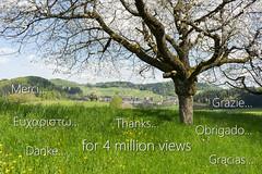 Thanks_4_4mio_views (AndiP66) Tags: thanks schweiz switzerland spring gracias merci obrigado sony 4 kitlens views million fe alpha grazie frhling danke a7ii 7ii sonyalpha kantonluzern cantonlucerne altbron 7m2 andreaspeters 4millionviews f3556 luzernerhinterland emount sel2870 sonyfe2870mmf3556oss ilce7m2 7markii 2870mm